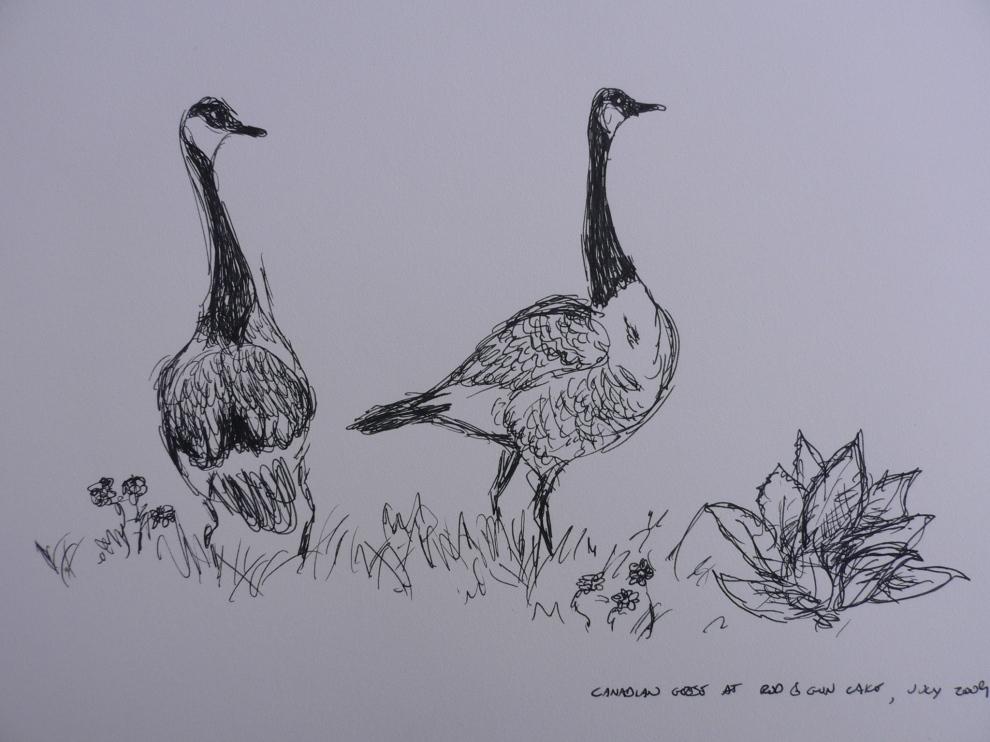 """""""Geese"""", black gel pen on sketch paper. 2008-9"""
